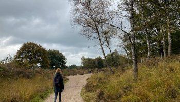 NS-Wandeling-Hollandse-Rading-naar-Baarn